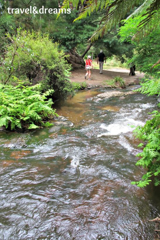Kerosenne Creek