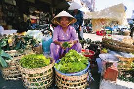 vietnam4