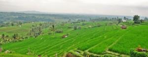 Jatituith. Bali