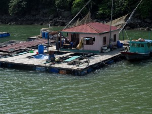 HA LONG (137) (Copiar)