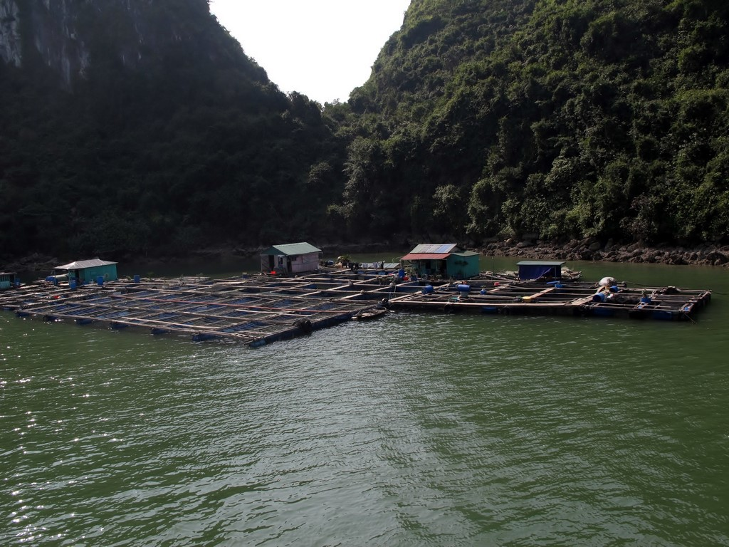 HA LONG (141) (Copiar)