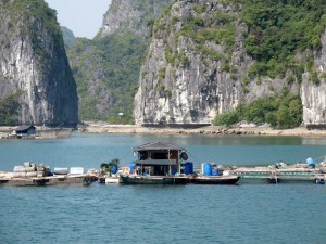 HA LONG (161) (Copiar)
