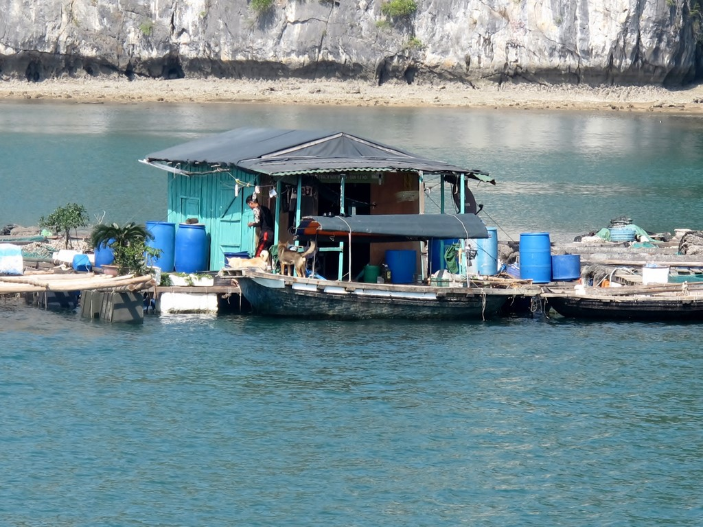 HA LONG (162) (Copiar)