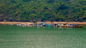 HA LONG (30) (Copiar)